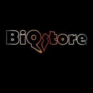 BiQStore - digital learning