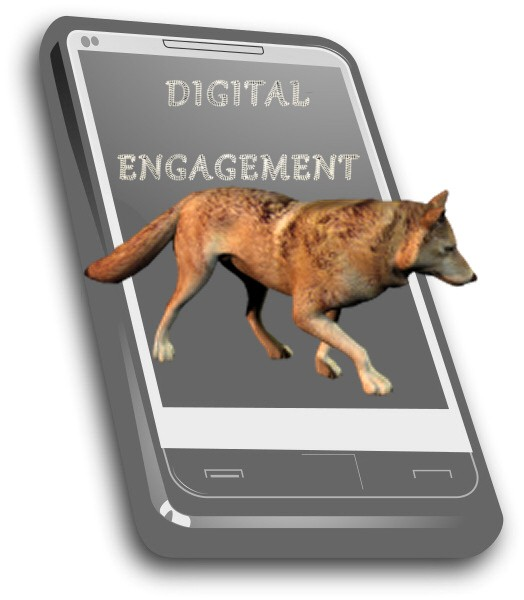Digital Marketing that boosts engagement – Neuroscience