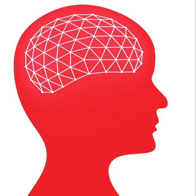 Latest News: New research shows how the brain works with mathematics